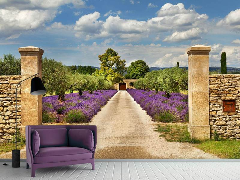 Photo Wallpaper Lavender Garden