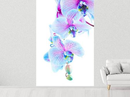 Photo Wallpaper Orchid Butterfly